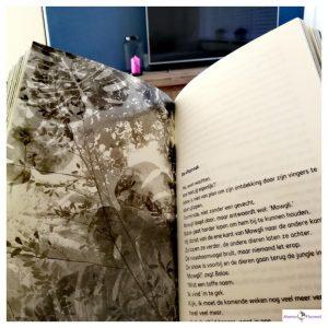 Boek voor kinderen met dyslexie : The Jungle Book : Samen sta je sterk