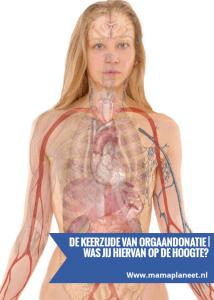 mensenlichaam met alle organen