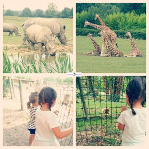 Dierenpark Cerza Normandie Frankrijk