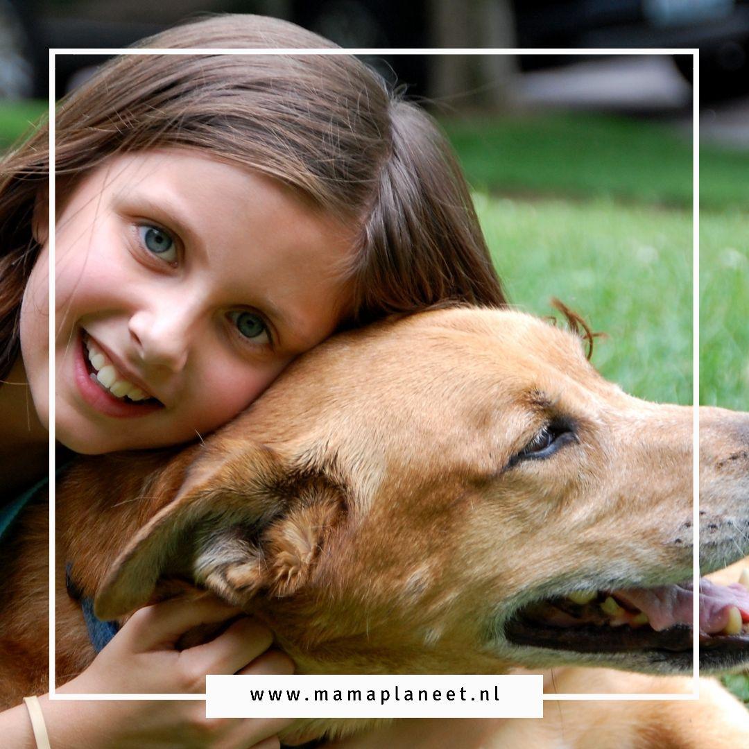 dierenliefde | kind met hond als huisdier opvoeden MamaPlaneet.nl