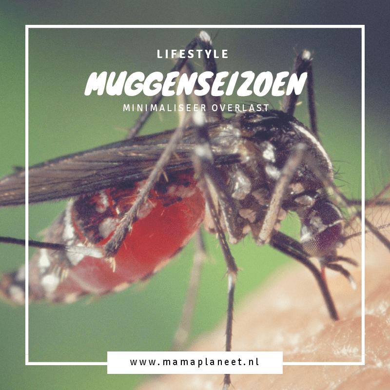 mug muggenseizoen