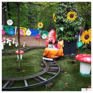 zonnebloemen, rails, paddenstoelen en 2 meisje in een zelfrijdende wagentje