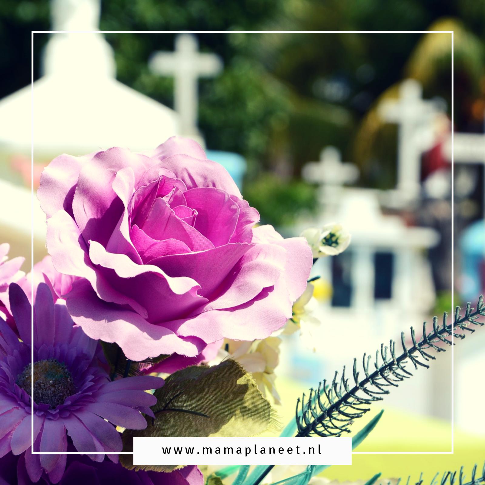 bloemen op een begraafplaats