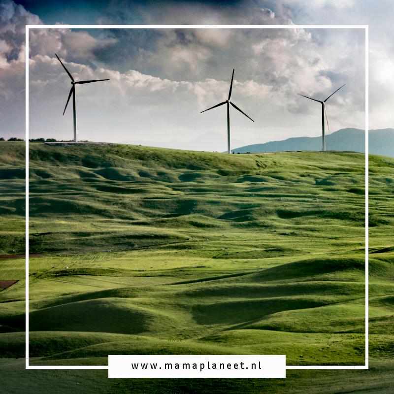 windmolens op een prachtig groen tapijt van gras
