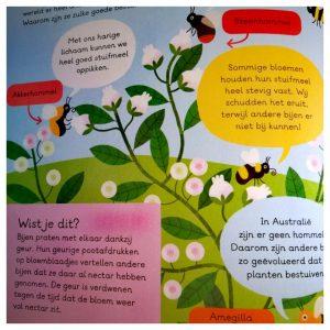 kinderboek over bijen voor slimme kleuters