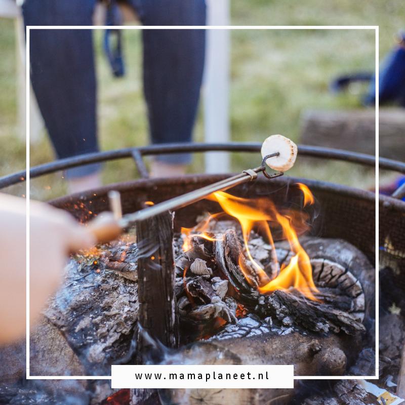 Maak je tuin zomerklaar met onder andere een vuurkorf en haardhout, haal wat marshmallows in huis