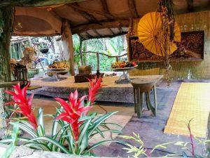 Jungle met kinderen Orchideeënhoeve Luttelgeest