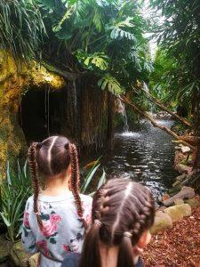 Dagje uit met kinderen Orchideeenhoeve jungle Luttelgeest Flevoland