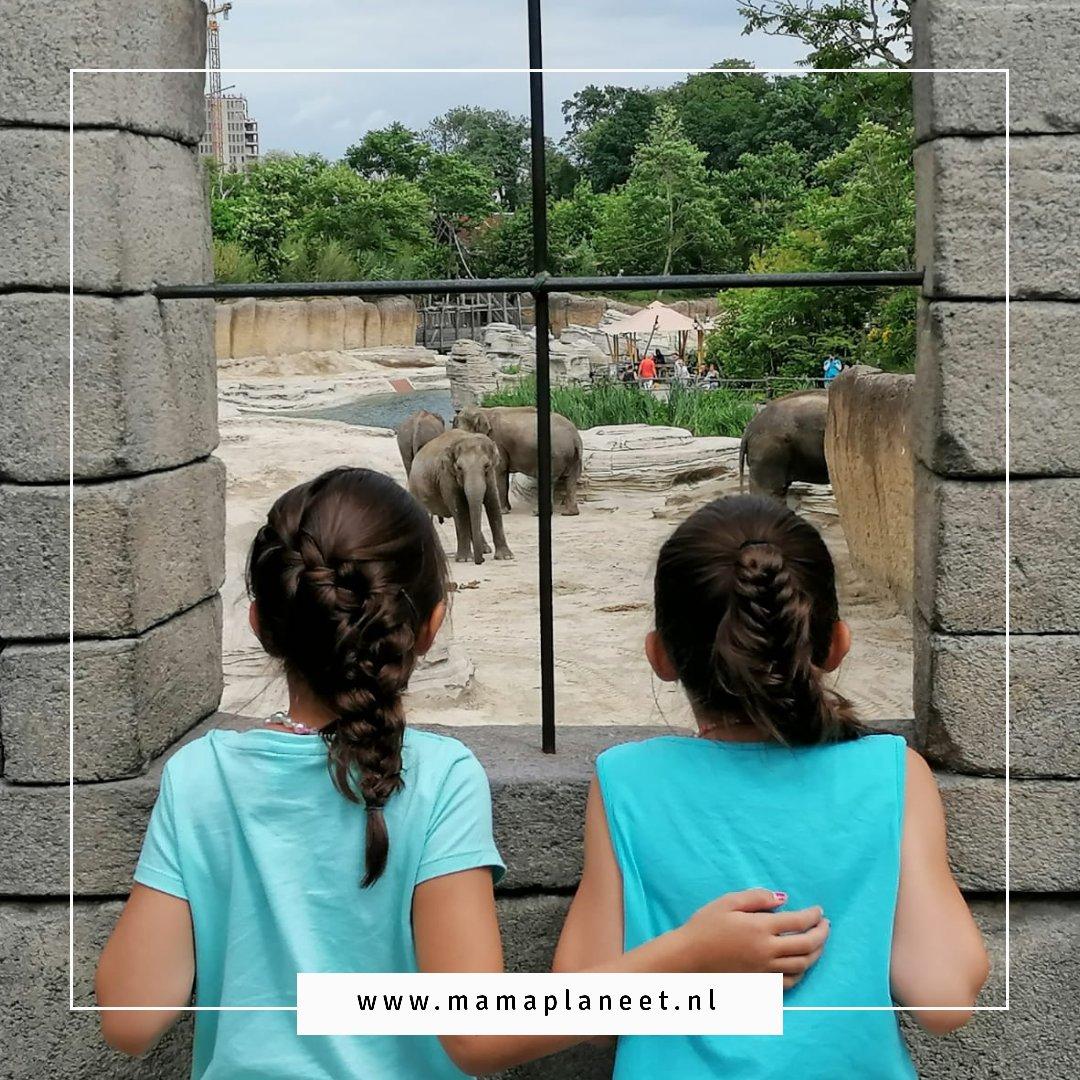 leukste uitjes in Drenthe met kinderen in Drenthe MamaPlaneet.nl