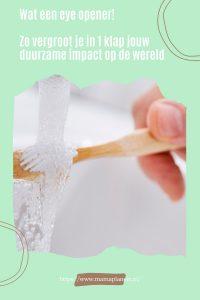 Zero waste bamboe tandenborstel en duurzaam tandenpoetsen MamaPlaneet.nl